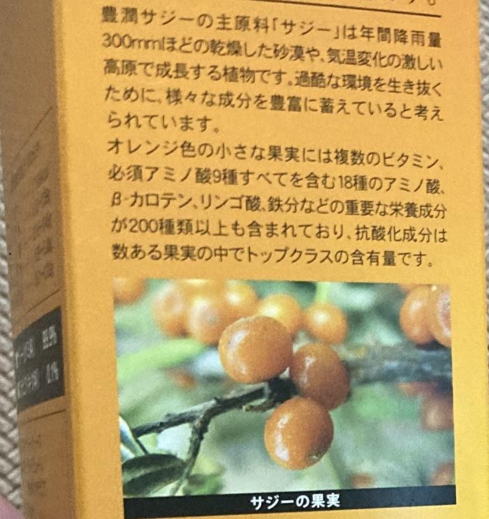 サジーの果実